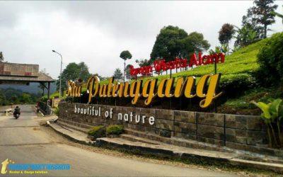 Wisata Situ Patenggang Bandung                                        4.98/5(56)